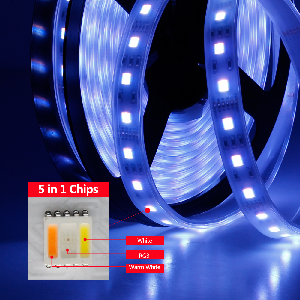DC 12V/24V 5050 SMD Flexible LED Strip 60LEDs/m Emitting RGBCCT 5 Color in 1 Chips RGB+WW+CW